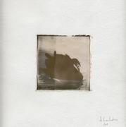 The Black Swan (23x23 cm)