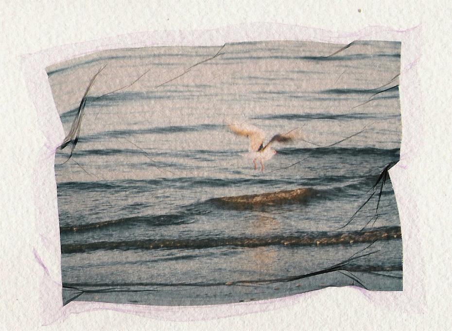 Scriviamo la nostra storia nel cavo dell'onda.Cécil Guérard