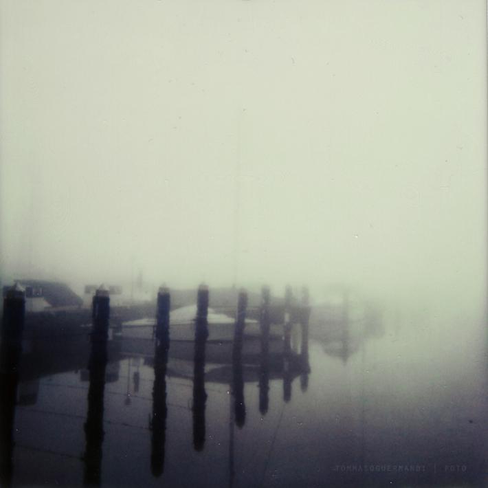 Fog will bring us evolution
