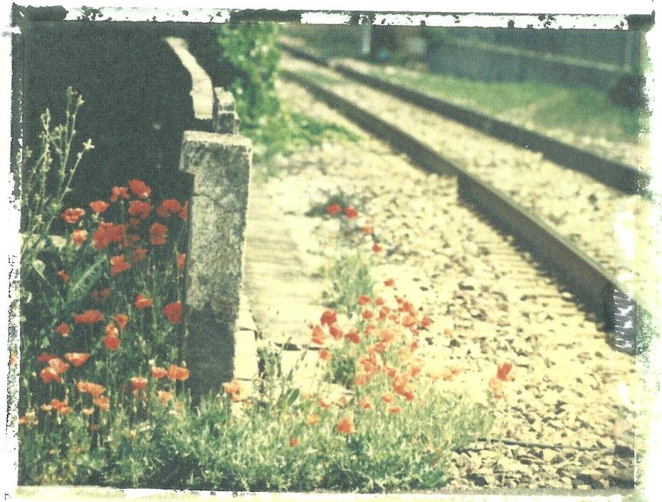 ...dove corrono i treni...