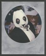 Panda elegant...!