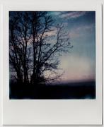 natural silence (colors)