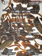 Introducción a la Arqueozoología - on line