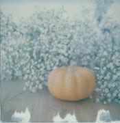 L'Ottobre #2