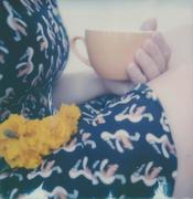 Toucans & Marigolds