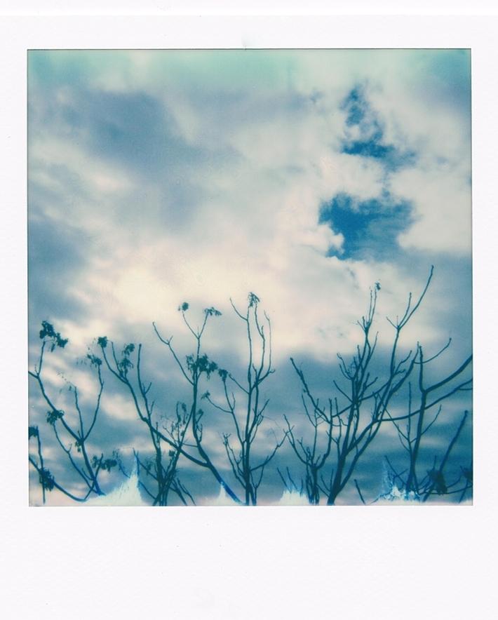 Un refolo di vento