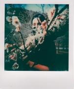 I primi cenni di primavera.
