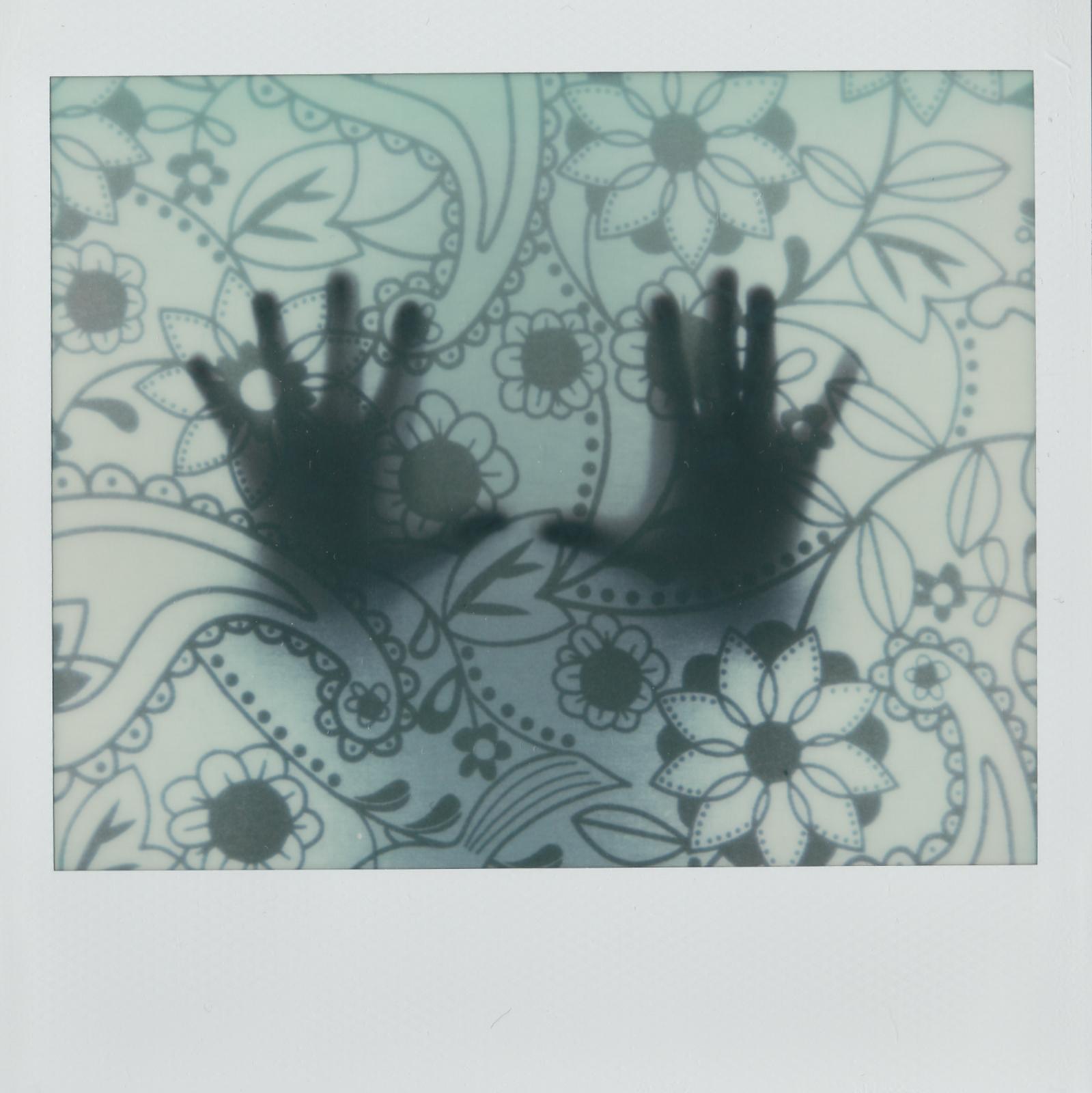 Flower-shadows-1