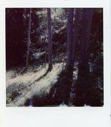 polaroid_print_020