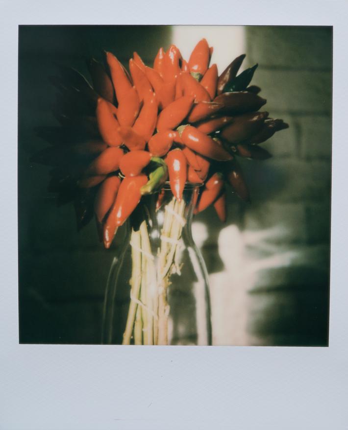 se sono fiori