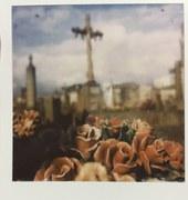 Polaroid stefano q