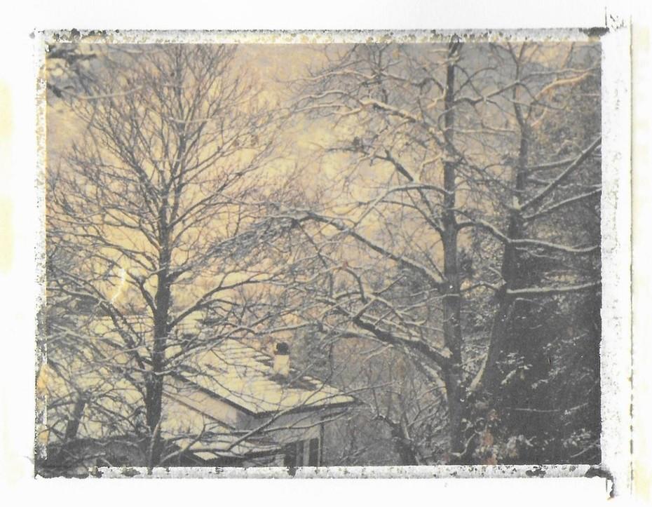 La neve pose una tovaglia silenziosa su tutto... (Fernando Pessoa)