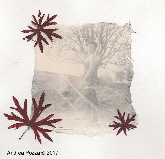 Monti Lessini 03