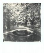 """""""L'autunno è la primavera dell'inverno"""". (Henri de Toulouse-Lautrec)"""