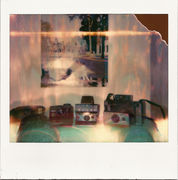 Polaroid. What else?