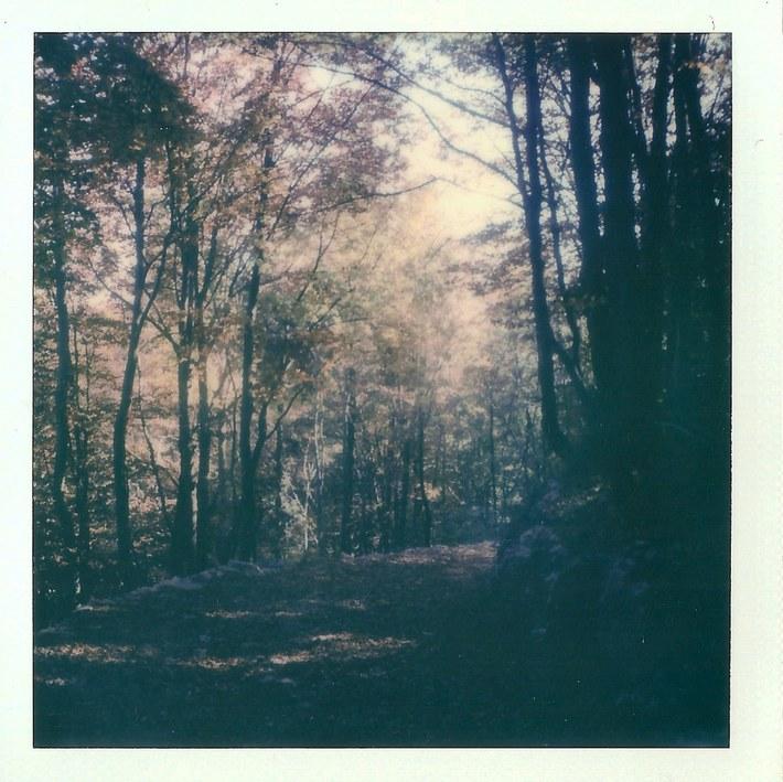 Autumn landcapes