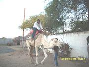 Kalolo in IAA