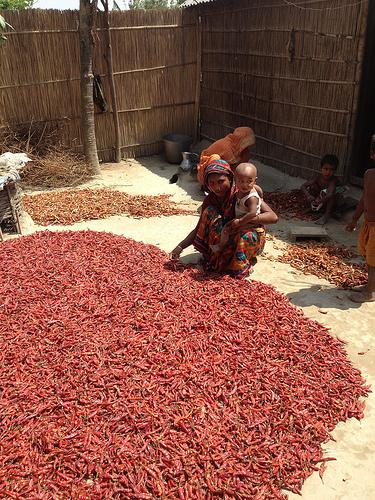GEM workshop in Bangladesh - May 2012