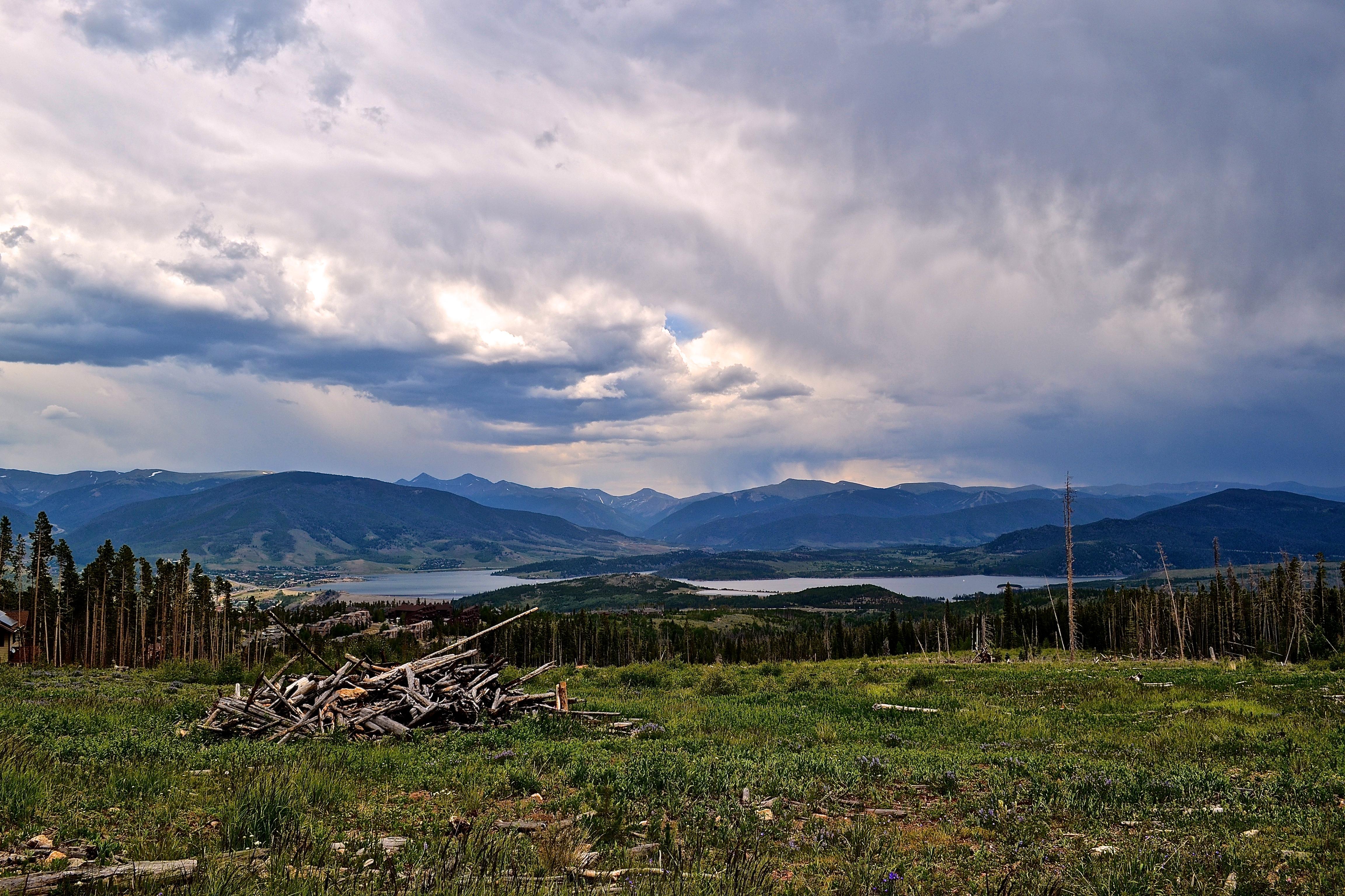 Deforestation in Colorado