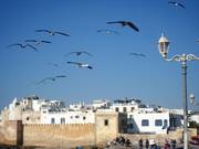 "Maroc/essaouira, Séjour ""Eveil des Sens"" du 20 au 27 octobre 2014."