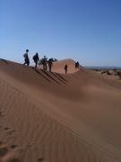 Rencontre avec le désert marocain