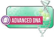 Stage ThetaHealing ADN Avancé