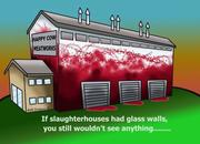 Even If slaughter houses have glasses instead of walls
