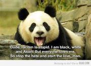 dude racism is stupid