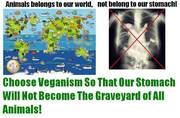 Choose veganism
