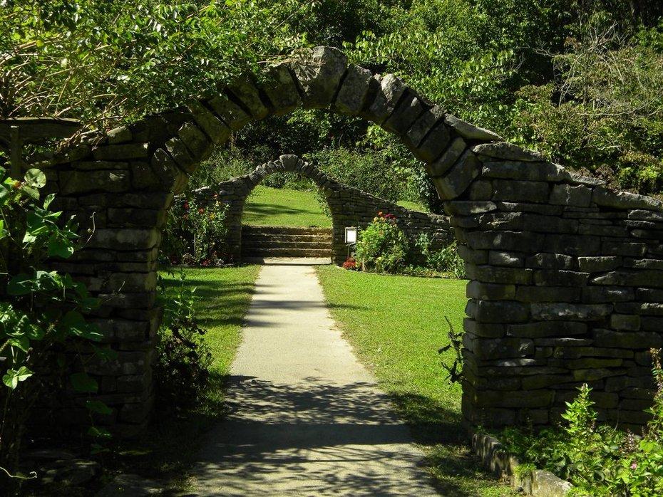 Journey of Pathways.