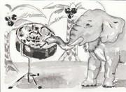 pan elephant