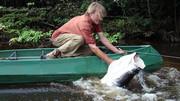 TV: O Pescador Guerreiro
