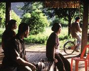 CINEMA: O Tio Boonmee que se lembra das suas vidas anteriores