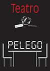 """""""PELEGO"""";JÚLIO RESENDE e Convidados;INSCH"""