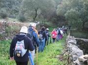 AR LIVRE: Caminhada à Descoberta de S. Miguel