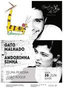"""MÚSICA: """"Gato Malhado & Andorinha Sinhá"""" – Telma Pereira & João Roque"""