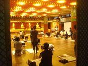 Koreans doing their 108 morning prostrations