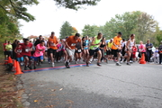20th Annual Rehabilitative Resources, Inc. Rise & Run Road Race