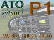 P1_VATSIM_ONLINE_PILOT