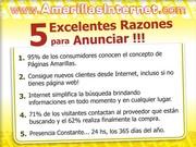 AMARILLAS INTERNET-1