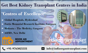 Importance of kidneys and facilities for kidney transplant in India