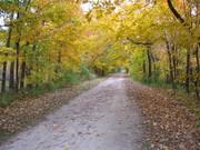 A road ahead