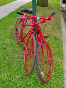 Red Bikes in Love