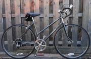 Bike for non-rider