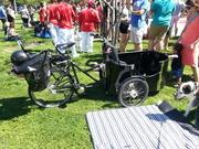 WestTown Dog Parade 7-29-17