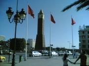 Tunis Ivan Bubu