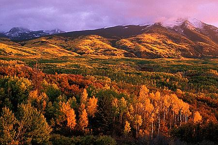 fall_foliage57