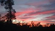 Auburn California
