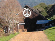 Farm House in Bolinas