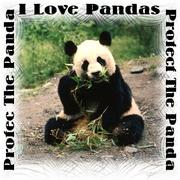 Protect the Pandas